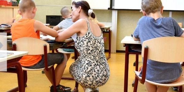 Curso: Atención a las Necesidades Educativas Especiales en el Aula Regular